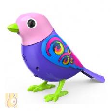 Digibirds Ptaszek Legacy S88025/6