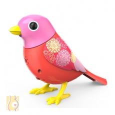 Digibirds Ptaszek Scarlett S88025/8